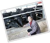 肉のやわらかさと旨みを追求した国産牛黒牛